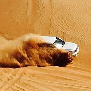 desert-safari